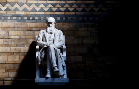 Un día llegó el miedo y ya nunca se fue: la lucha de Charles Darwin contra sí mismo