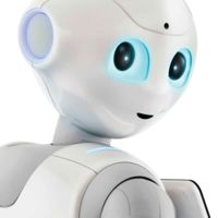 Si quieres comprar un robot Pepper tendrás que firmar que no vas a tener sexo con él