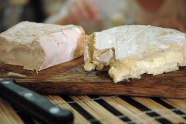 El queso Brie. Nota de cata y características