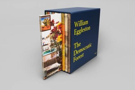 William Eggleston The Democratic Forest 3