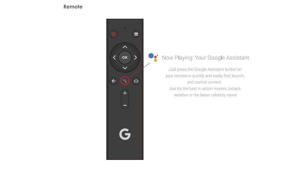Google Stick
