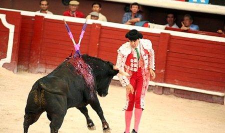 Reducir el IVA de las corridas de toros sería una mala decisión, al menos por ahora