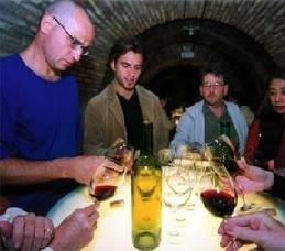 El arte de catar el vino, los cursos y la formación