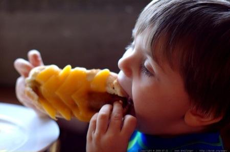 El estudio ALSALMA indica que más del 90% de los niños de entre 1 y 3 años consumen más del doble de las proteínas recomendadas