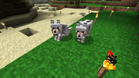 Domesticar lobos Minecraft