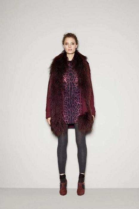 Foto de Dolce & Gabbana Fall 2011 (12/76)