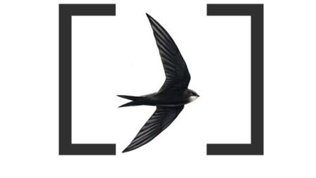 Objective-C & Swift