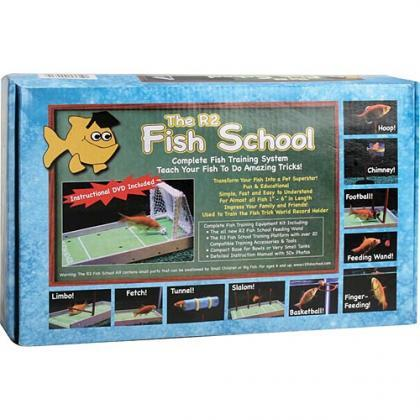 Entrena a tu pez