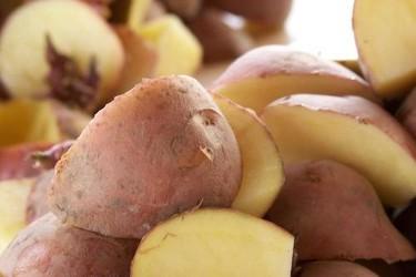 Los viajes de la patata, taller del Museo de América