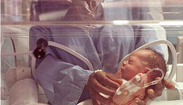 La leche materna es ideal para el desarrollo intelectual de los niños muy prematuros