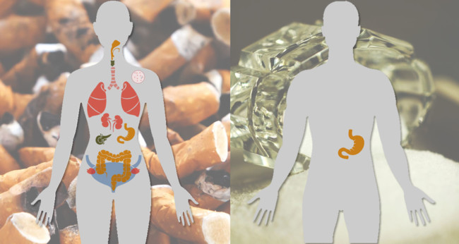 Factores de riesgo de cáncer y órganos propensos: éste es el mapa interactivo para unirlos a todos