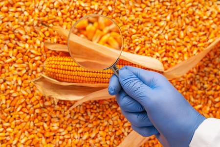 Fraude Alimentario Industria Alimentaria3