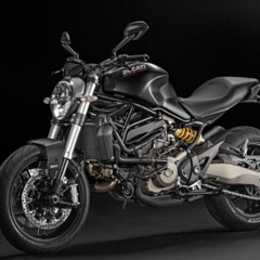 Foto 109 de 115 de la galería ducati-monster-821-en-accion-y-estudio en Motorpasion Moto