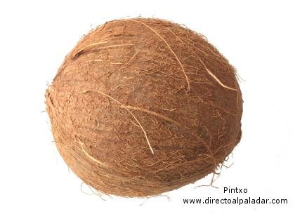 El fruto seco más grande, el Coco