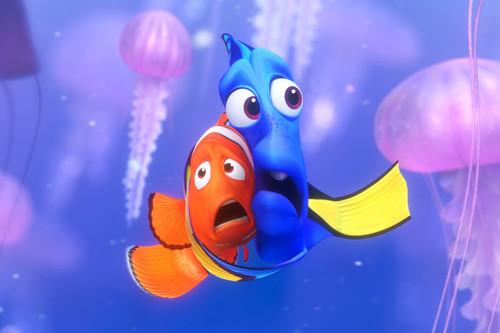 """""""¡Me ha picado una medusa!"""": esto es lo que tienes que hacer inmediatamente después"""