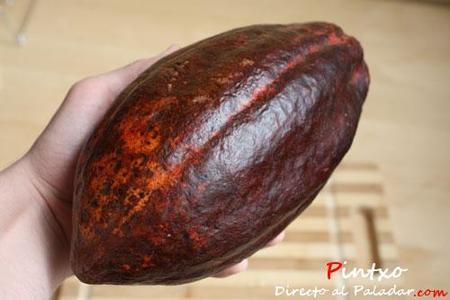El cacao en la gastronomía