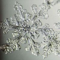 Toda la belleza del invierno está en estas fotos de copos de nieve que están triunfando en Instagram