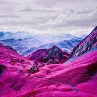'Modernising Nature', de Zak van Biljon, cuando la naturaleza se convierte en un mundo onírico gracias a la fotografía infrarroja