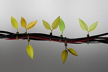 Leaf Tie, convierte los cables en ramas con brotes
