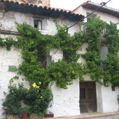 Foto 19 de 35 de la galería sierra-de-albarracin en Diario del Viajero