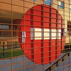 Foto 6 de 38 de la galería fotos-tomadas-con-el-realme-6s en Xataka Móvil