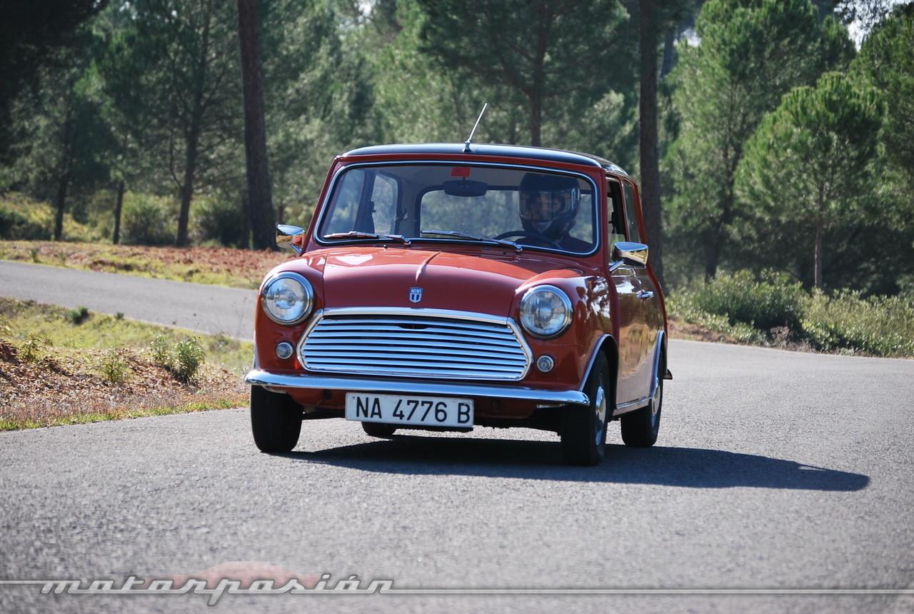 Foto de Authi Mini 850 L (prueba) (55/62)