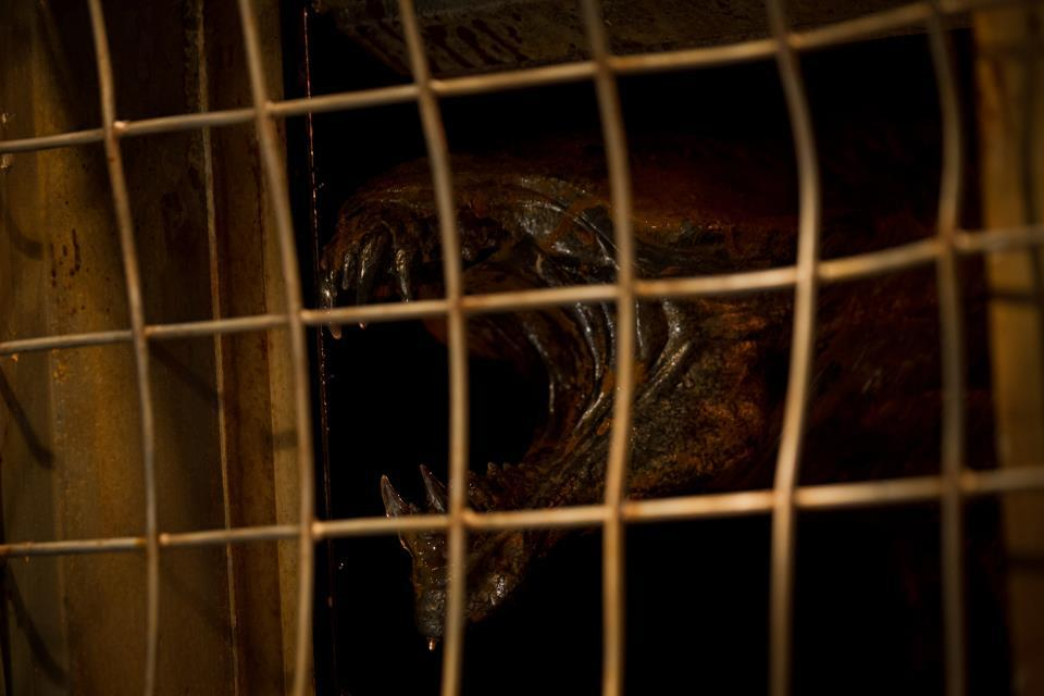 Foto de 'Riddick', imágenes (4/7)