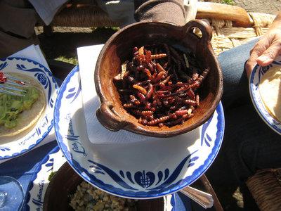 Los insectos comestibles contienen más hierro que un filete de res