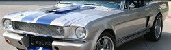 1965 Shelby Mustang GT350SR 40th Anniversary