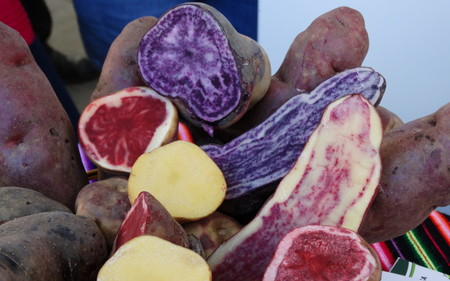 La patata, desde Perú hasta la península, pasando por Canarias: cinco chefs nos hablan de ella y de sus recetas predilectas
