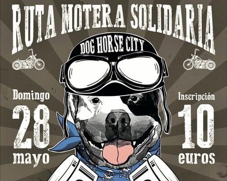 ¡No seas perro! Puedes montar en moto y ayudar a los animales abandonados al mismo tiempo el 28 de mayo