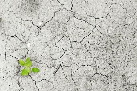 Y Por Fin China Deja De Ponerse De Perfil Y Asume Debidamente Su Responsabilidad Mas Verde Con El Cambio Climatico 4