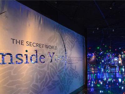 """Un mundo dentro de ti"" la gran exposición sobre microbios llega a Universum, Ciudad de México"