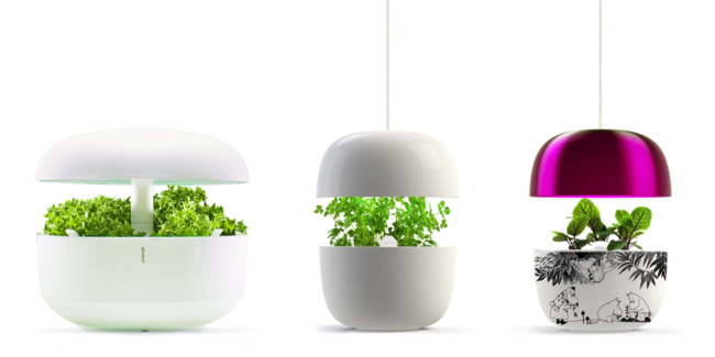 Plantui es la nueva tendencia en cultivo hidropónico que llena de vida nuestras cocinas