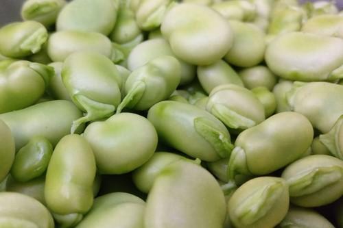 Habas: cinco recetas de temporada con esta deliciosa legumbre