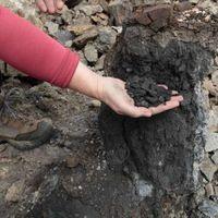 Se confirma que la quema de carbón en Siberia propició un cambio climático hace 250 millones de años