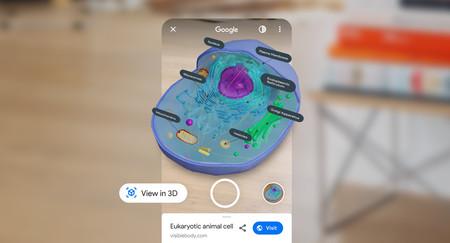 La realidad aumentada de Google te permite explorar el cuerpo humano