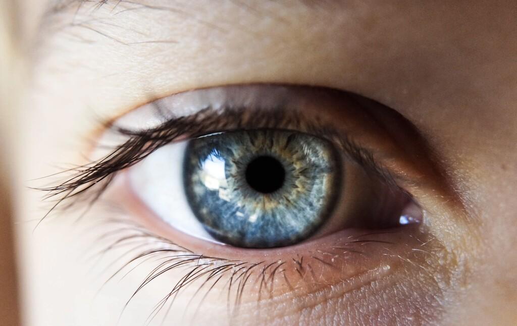 Worldocoin plantea dar criptomonedas a todas las personas del planeta, a cambio de escanear su iris