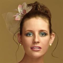 Foto 9 de 18 de la galería tendencia-peinados-novia-2009-monos-altos en Trendencias Belleza