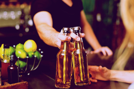 Artican Cerveza Fria 2