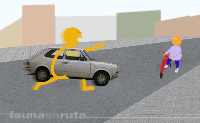 fauna en ruta: road rage