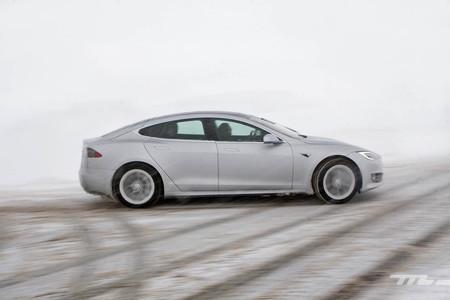 Tesal Model S 100d Action