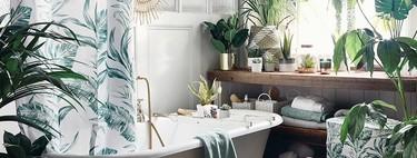 Viste tu hogar con estilo y en clave low-cost: Primark nos demuestra cómo