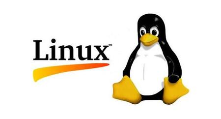 Liberan la versión 3.12 del Kernel de Linux