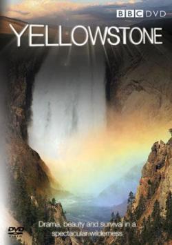 yellowstone300.jpg