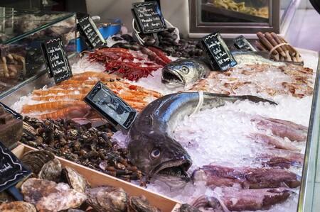 Fish Shop 1111293