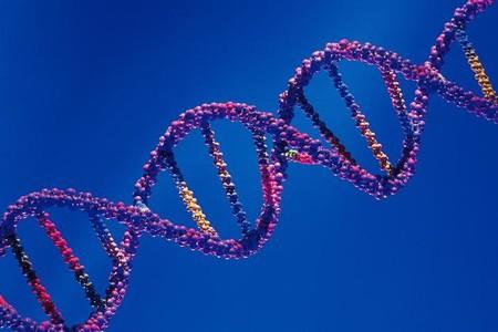 El ADN de nuestro padre nos influye más que el ADN de nuestra madre