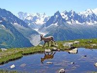 Chamonix, cuna del senderismo y los deportes de aventura