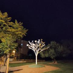 Foto 64 de 84 de la galería fotos-tomadas-con-el-realme-5-pro en Xataka