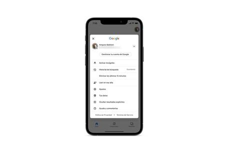 Cómo eliminar los últimos 15 minutos del historial de Google en un iPhone